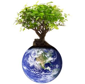 Welt mit einem Baum Drauf